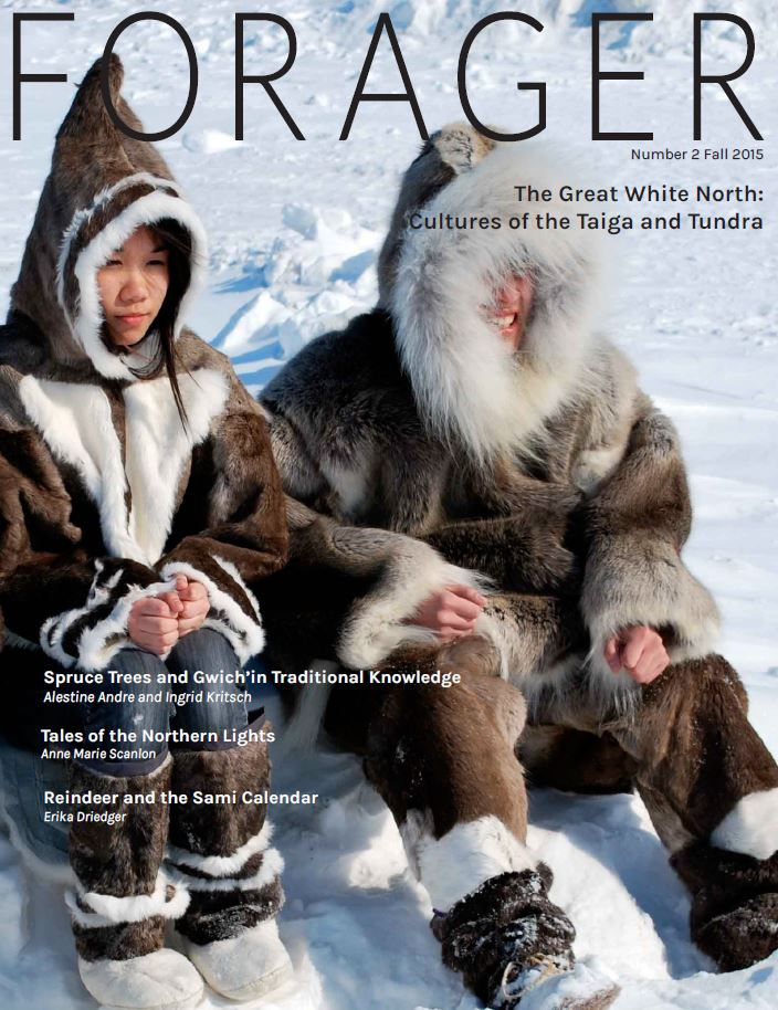 Spruce Trees and Gwich'in Traditional Knowledge: Their Importance in the Northwest Territories