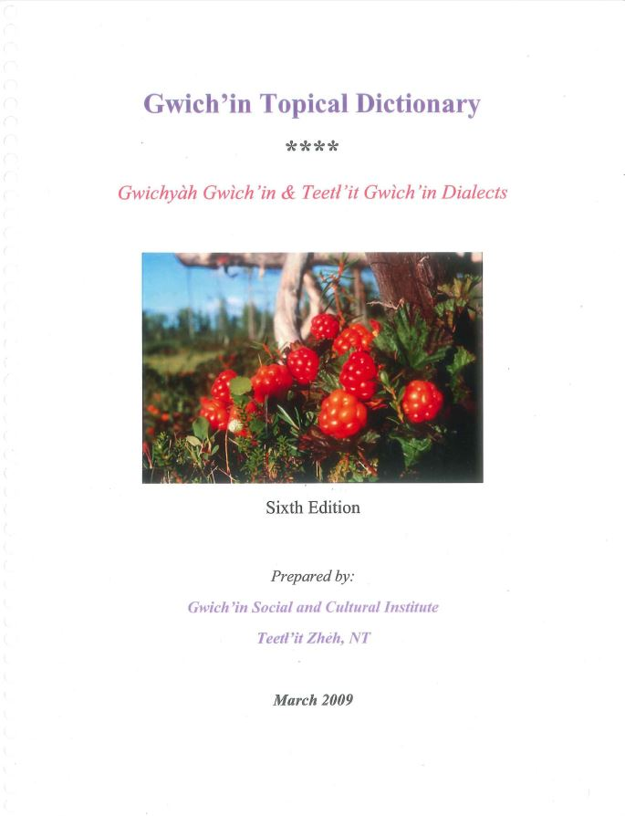 Gwich'in Topical Dictionary (6th edition) Report cover