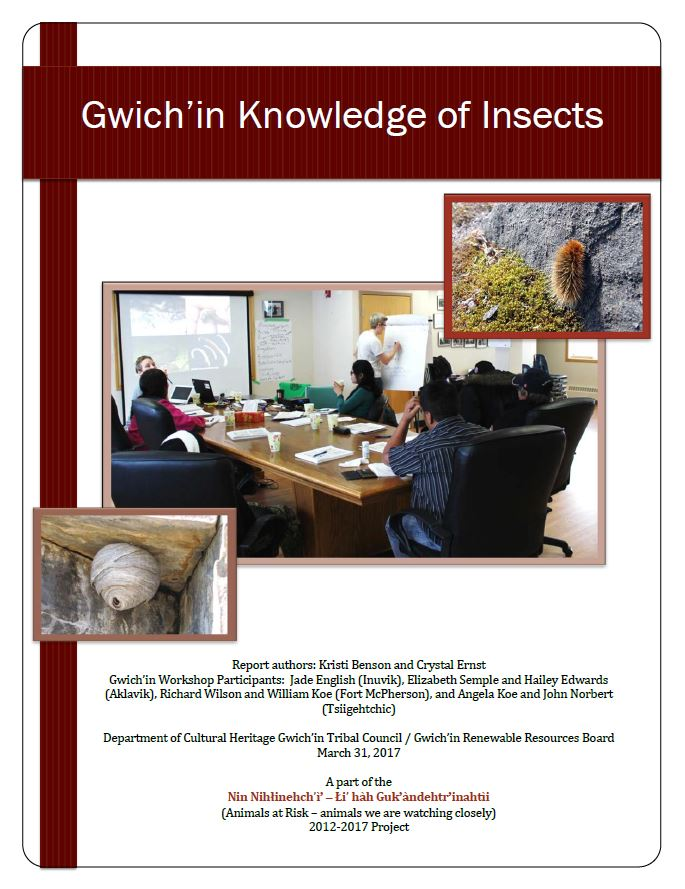 Gwich'in Knowledge of Insects Report Cover